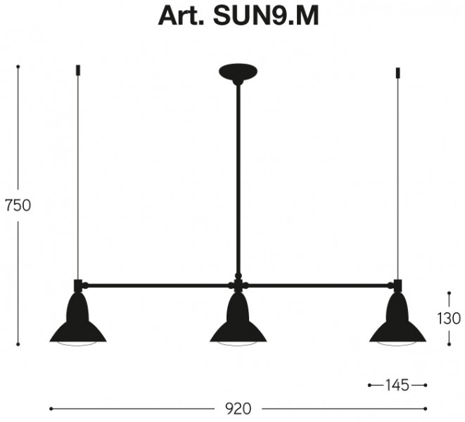 Clematide  SUN9.M.NI (attach1 4796)